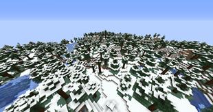 Snow Under Trees