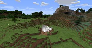 Chickenbomb — The Most Violent Chicken Spawner