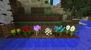 Growing Flowers 2