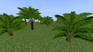 Prehistoric Plants